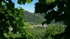 Prosecco country - Motion view at Santo Stefano di Barbozza Stock Footage