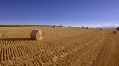 Harvested field rural countryside landscape haystacks bales horizon sun blue sky Stock Footage