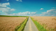 Countryside rural scenery golden ripe wheat agriculture field farming small road Stock Footage