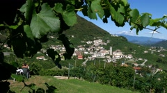 Motion view of the Prosecco hills Stock Footage