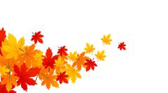 Background with maple autumn leaves Stock Illustration