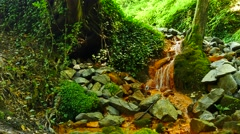 Cascades in rapid stream of mineral water. Red ferric sediments on big boulders Stock Footage