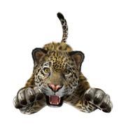 3D Rendering Big Cat Jaguar Stock Illustration