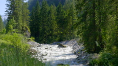 Countryside landscape beautiful Alps green forest stream fresh clean water Stock Footage