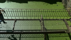Young beautiful girl walks on thin ruined rusty metal bridge over green water. Stock Footage