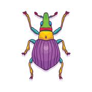 Colorful Beetle Bug Insect Stock Illustration