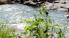 Nature of Ukraine. Canyon in Buki. Stock Footage