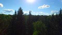 Camera flies along the treetops.mp4 Stock Footage