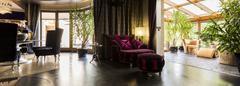 Velour purple armchair Stock Photos