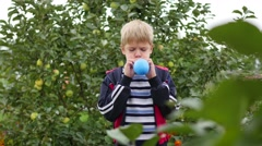 Child in the garden inflate a blue balloon Stock Footage