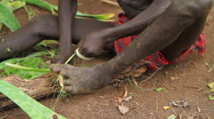 Medium Shot Tilting Up to A Boy From An Omo Valley Tribe Stripping Plants Stock Footage