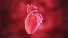 Loop Human heart with biology background.  Stock Footage