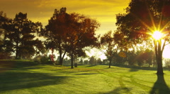 Golf, Golf Course, Fairway, Tree, Sun, Sun Beams, Early Morning, Late Afternoon, Stock Footage
