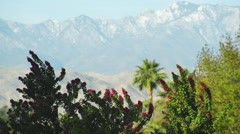 Static Shot of a Desert Mountain with Shrubbery Stock Footage