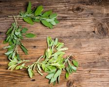 Variegated and green sage on a table Stock Photos