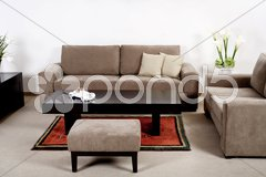 Modern living room with classic couch - stock photo
