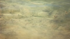 Clear water in the lake Stock Footage