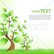 Sample text template with tree Stock Illustration
