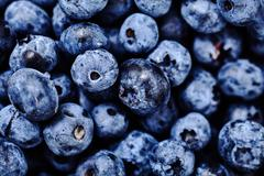 Shot of natural, freshly picked blueberries Stock Photos