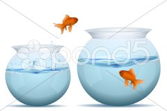 Fish jumping from one tank to another Stock Illustration