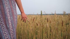 Hands girls slip on wheat Stock Footage