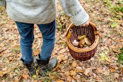 Unrecognizable man holding basket with mushooms, autumn forest Stock Photos