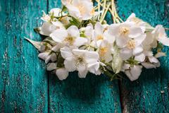 Jasmine flower on old wooden table, vintage style Stock Photos