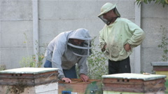 Two beekeepers look at bee honey frame from the hive Stock Footage