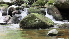 Fresh Mountain Stream in Shenandoah National Park Stock Footage