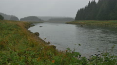 Bartlett River in southeast Alaska on grey overcast day Stock Footage