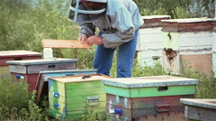 Beekeeper shakes the bees out of the hive parts Stock Footage
