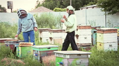 Two beekeepers in the apiary try fresh honey Stock Footage