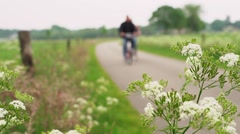 Man cycling on land road with beautiful flowers waving in the foreground Stock Footage
