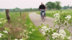 People cycling on land road with beautiful flowers in the foreground Stock Footage