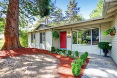 American rambler exterior with red entrance door and big fir tree in front. N Stock Photos