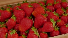 Fresh strawberry background. Ripe strawberry in close-up. Stock Footage