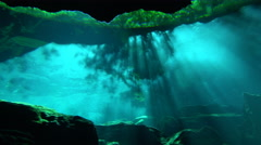 Sunlight Illuminates An Underwater Lair Near Mexico 4K Stock Footage