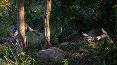Young Traveler Walking in Forest with Backpack. Hiking and Travel Concept. Stock Footage