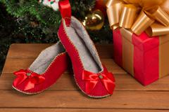 Red house slippers Stock Photos