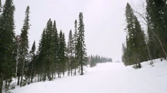 Snow covered fir trees in mountains during snowfall on cloudy day. 1920x1080 Stock Footage