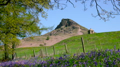 VIEW OF ROSEBERRY TOPPING NEWTON WOOD GREAT AYTON Stock Footage