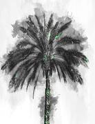 Single large palm tree as rendered painting Stock Illustration