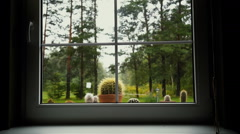Window blinds open with blur natural view background Stock Footage