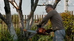 The gardener cuts the old branches on a tree, using a chain saw. Stock Footage
