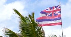 Hawaii Flag Waving In The Wind Stock Footage