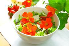 Nasturtium flowers salad bright light Stock Photos
