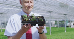 4K Portrait of smiling businessman holding a tray of seedlings Stock Footage