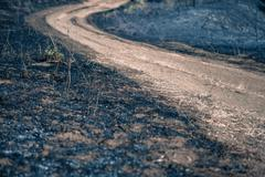 Turning path around scorched earth Stock Photos