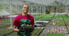 4K Portrait of smiling worker in large plant nursery Stock Footage