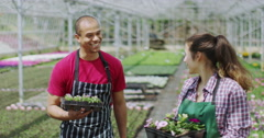 4K Portrait of smiling workers in large plant nursery Stock Footage